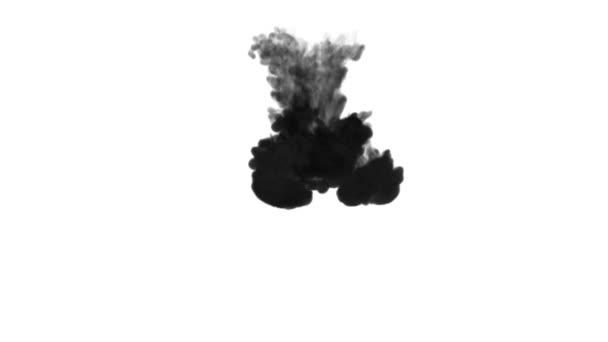 Egy tinta áramlását, infúziós fekete festék felhő füst- vagy, tinta beadni a fehér, a lassú mozgás. Fekete pigment keveri a vízben. Koromsötét háttér vagy füst hátteret, festékhatásokat használja luma Matt mint alfa-maszkot