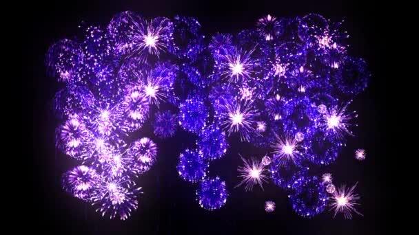 Fialový ohňostroje jako svátky pozadí pro nový rok, Vánoce nebo jinou oslavu. Krásné žabky show jsou izolovány na černém připraven pro skládání. 3D animace pyrotechnické světlo show.5