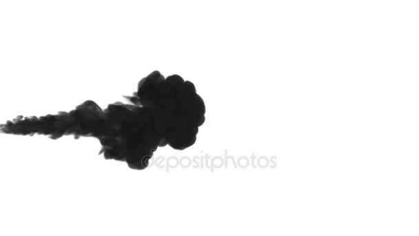 Egy tinta áramlását, infúziós fekete festék felhő füst- vagy, tinta beadni a fehér, a lassú mozgás. Fekete festék keveri a vízben. Koromsötét háttér vagy füst hátteret, festékhatásokat használja luma Matt mint alfa-maszkot