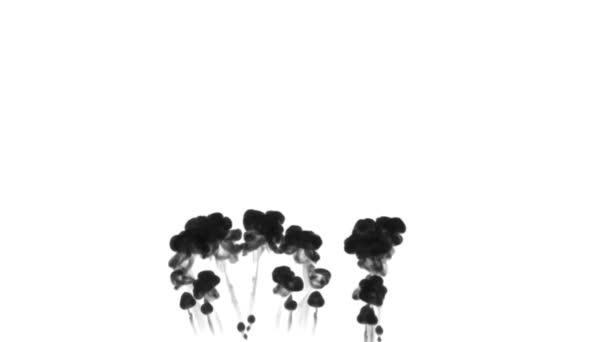inchiostro nero gocciolare splendidamente e si dissolvono in acqua goccia a goccia. come canale alfa usare Mascherino luminanza