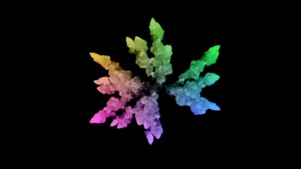 ohňostroje od barvy izolovaných na černém pozadí s pěkné trasy. exploze zbarveného prášku nebo inkoustu. šťavnaté kreativní exploze všechny barvy duhy ve vzduchu v pomalém pohybu. 13