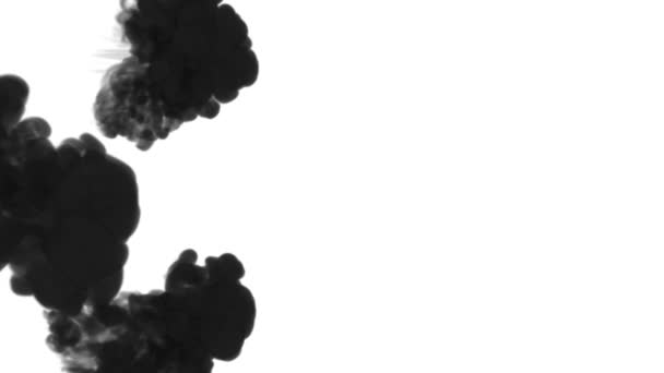 black ink dissolves in water on white background with luma matte. 3d render of computer simulation. V4