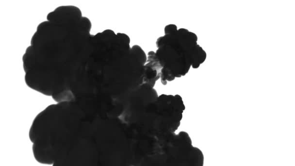 black ink dissolves in water on white background with luma matte. 3d render of computer simulation. V5