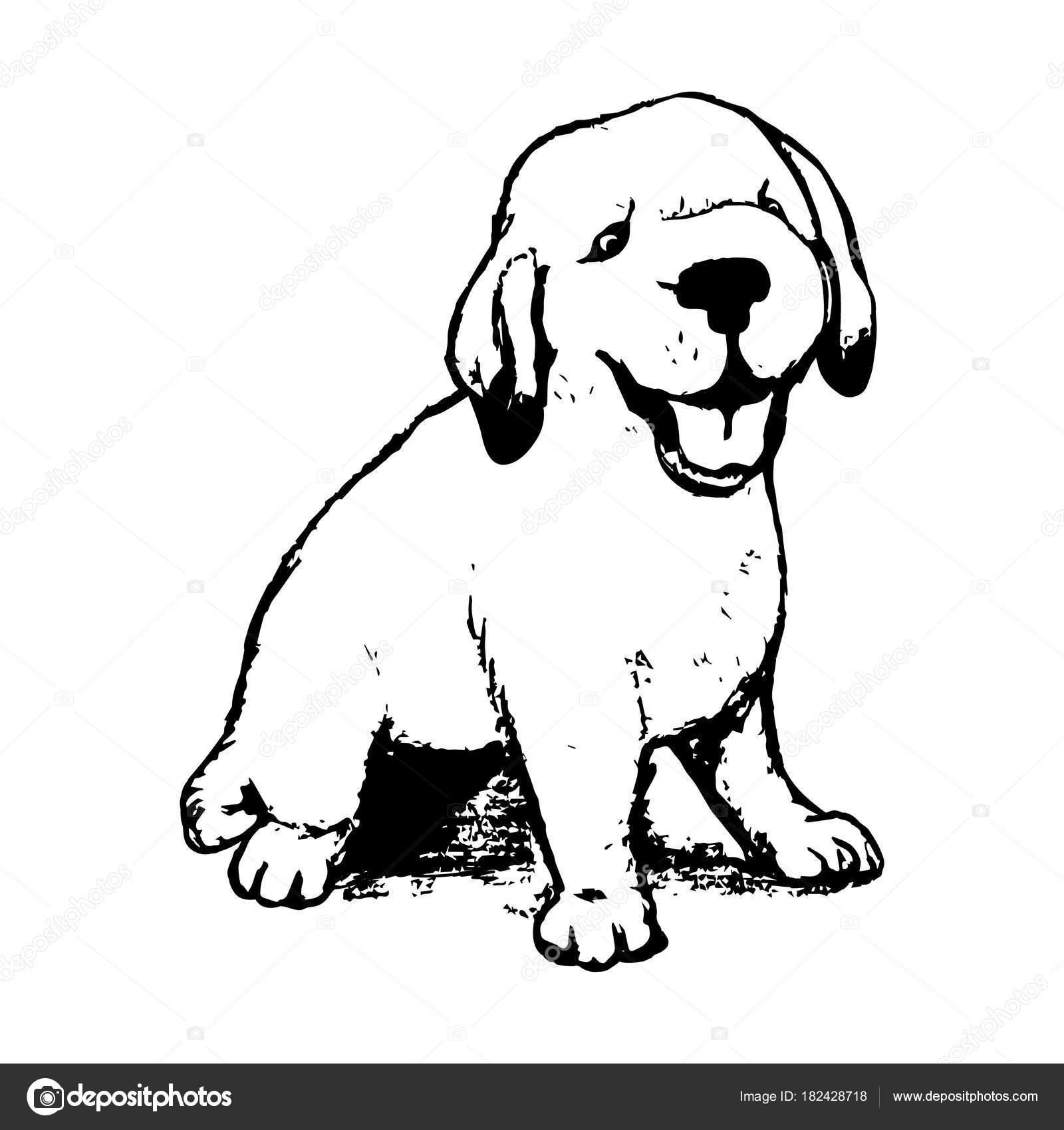Labrador Puppy Graphics Labrador Puppy Graphics Stock Vector C Mila Endo 182428718