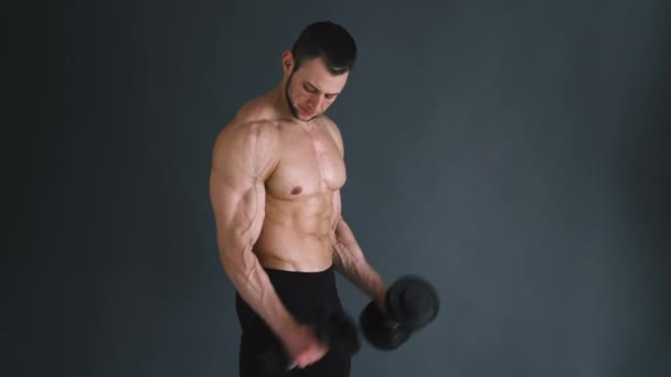 Concentrated topless bodybuilder performing biceps exercise with dumbbells over grey background.
