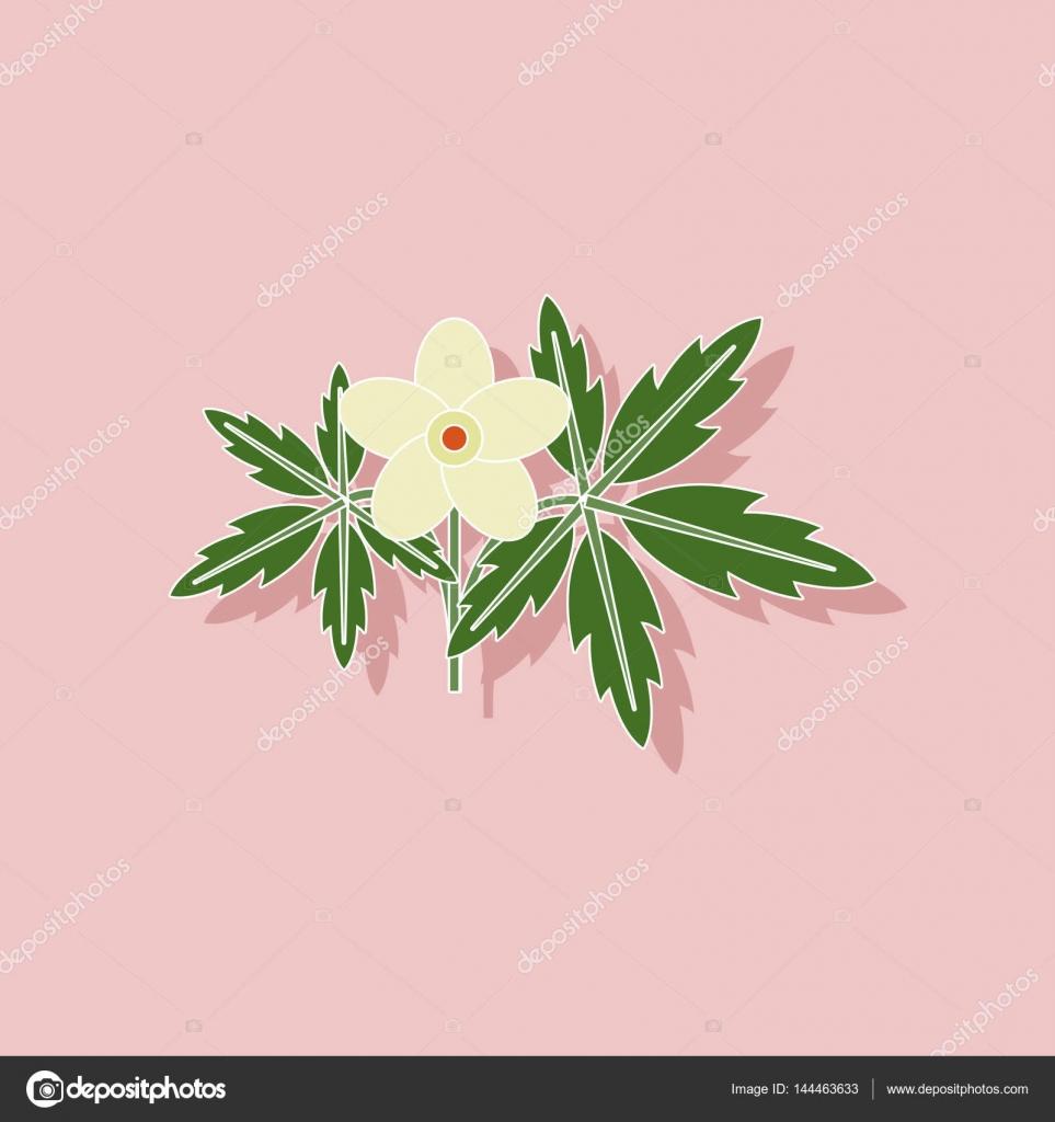 Paper sticker on stylish background flower anemone stock vector paper sticker on stylish background flower anemone stock vector izmirmasajfo