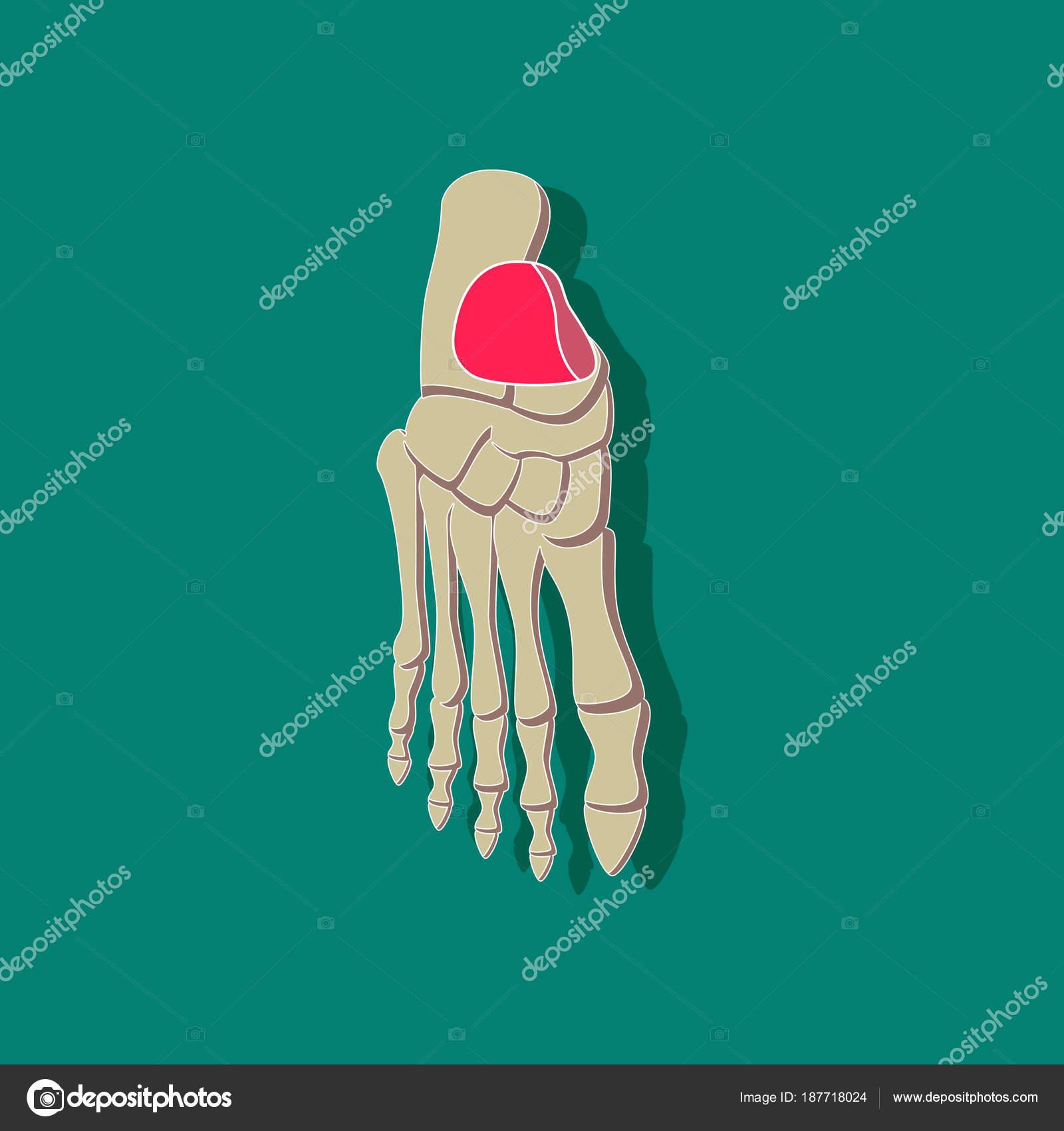 etiqueta engomada de papel esqueleto de pie sobre fondo con estilo ...