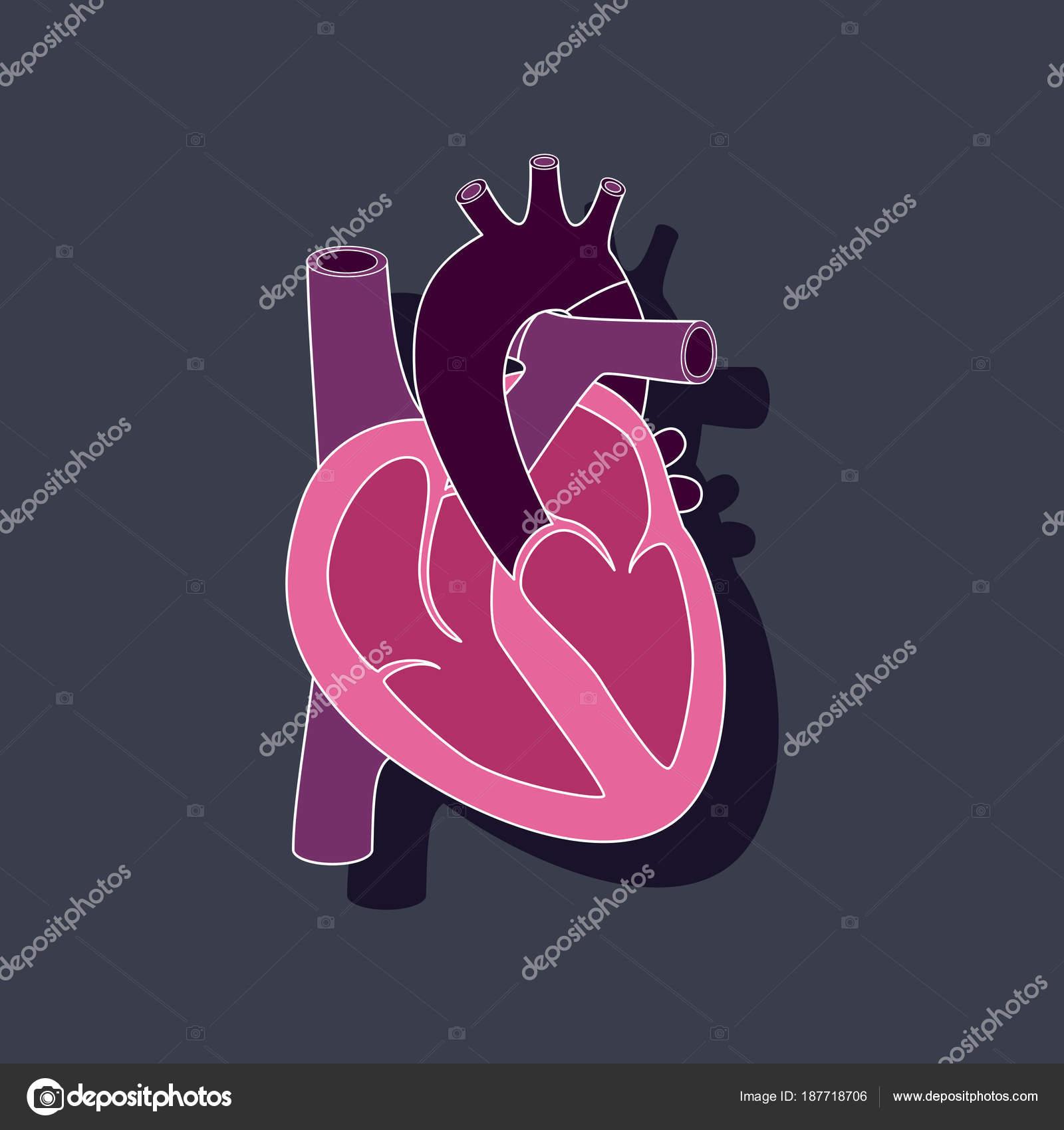 etiqueta engomada de papel de corazón humano en el fondo con estilo ...