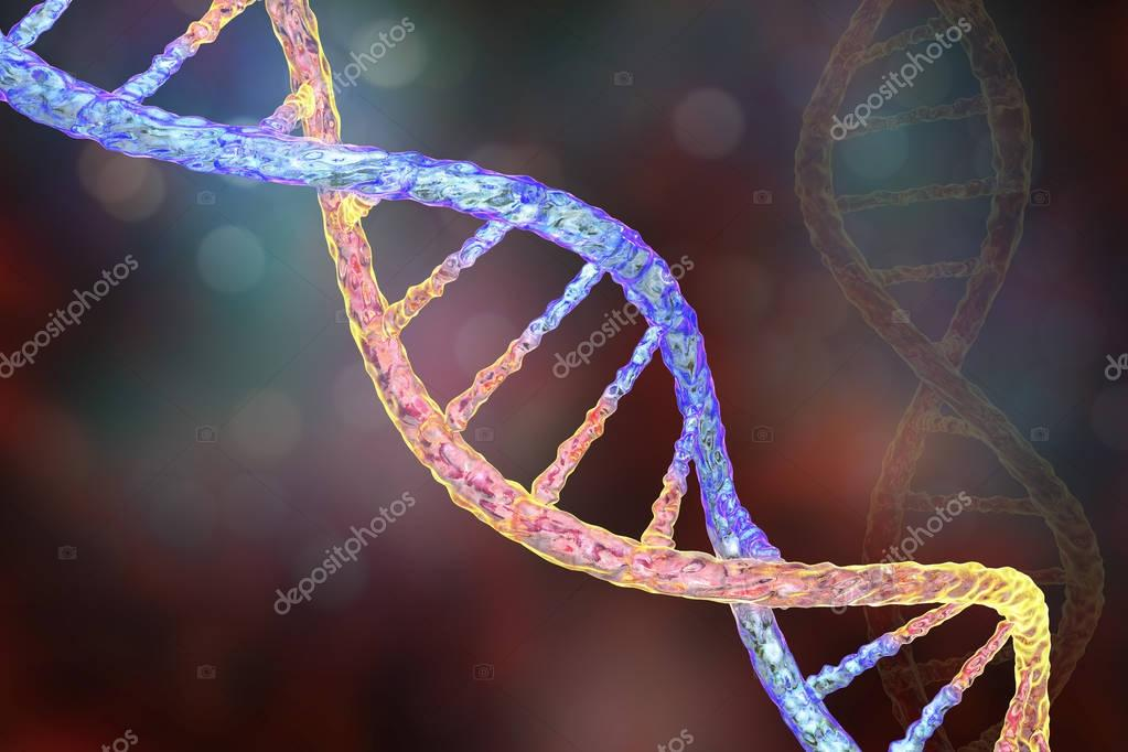 dna nucleotide ba self reliance - 1120×747