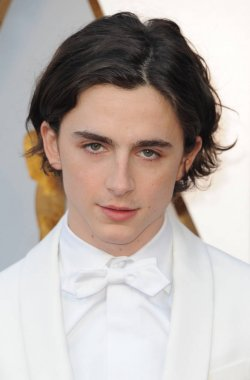 actor Timothee Chalamet at the 90th Annual Academy Awards held at the Dolby Theatre in Hollywood, USA on March 4, 2018.