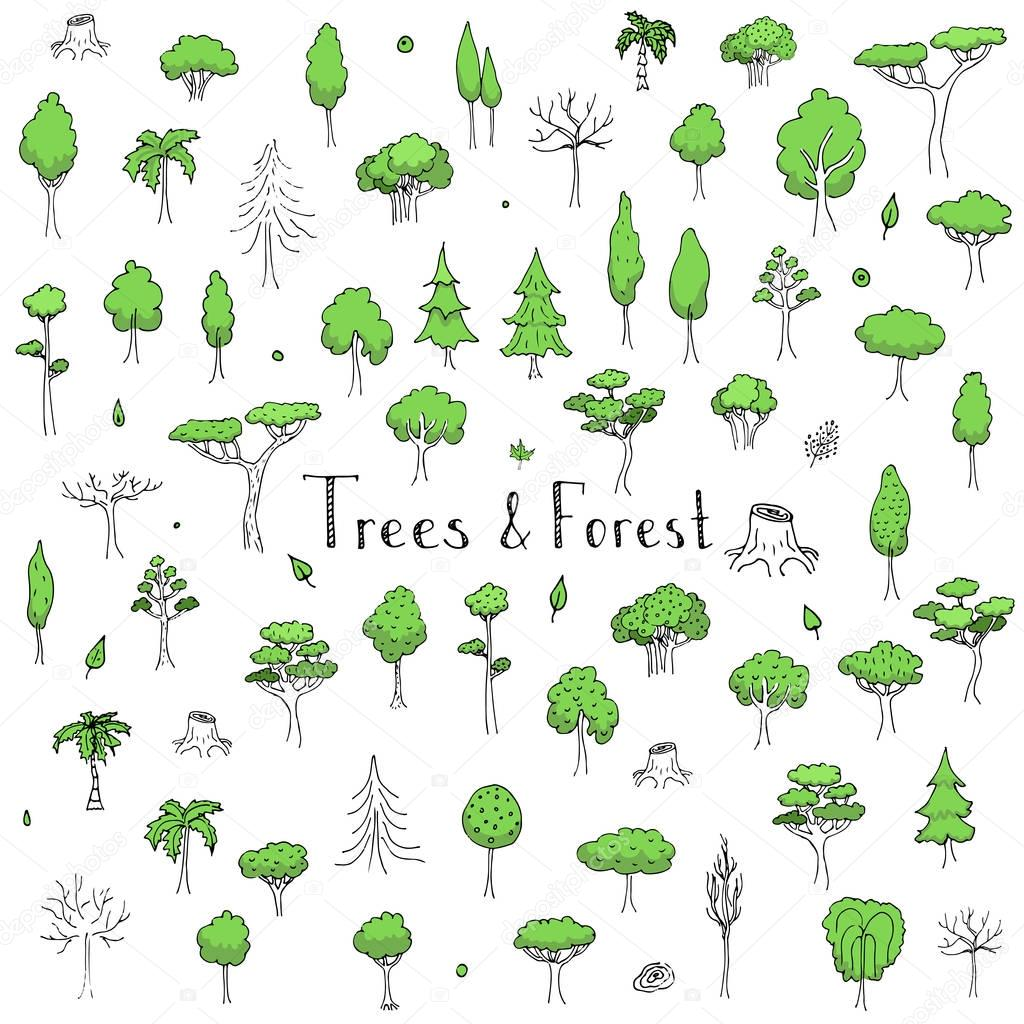 hand drawn doodle Trees and Forest