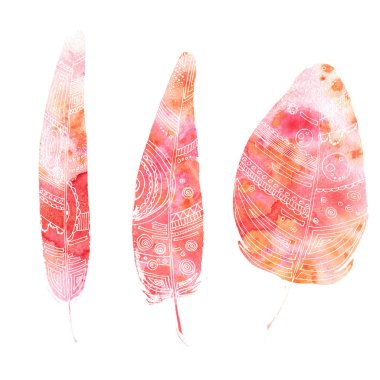 set of feathers, painted in watercolor and Liner, bright red col