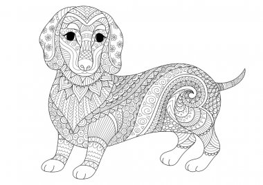 Zendoodle design of dachshund puppy for adult coloring book and T shirt design. Stock vector