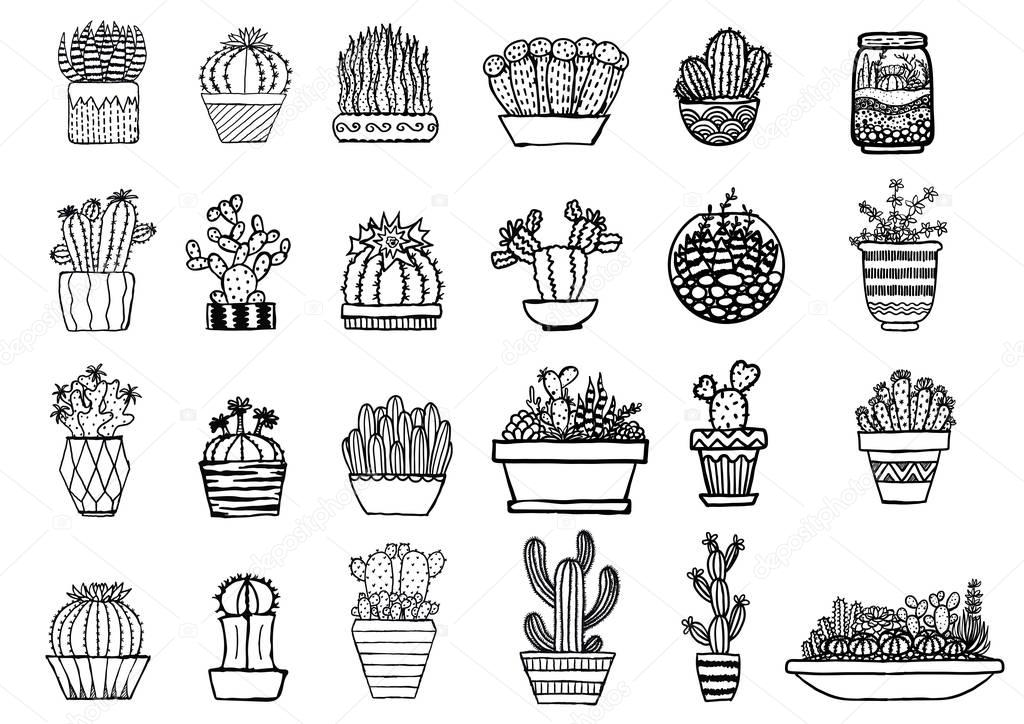 Big set of hand drawn cactus for design element