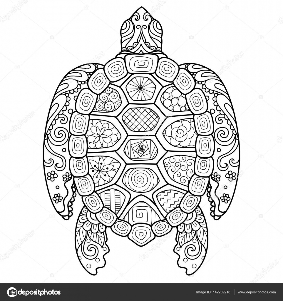 Zendoodle Stylize Of Beautiful Turtle For T Shirt Design Adult Coloring Book Page