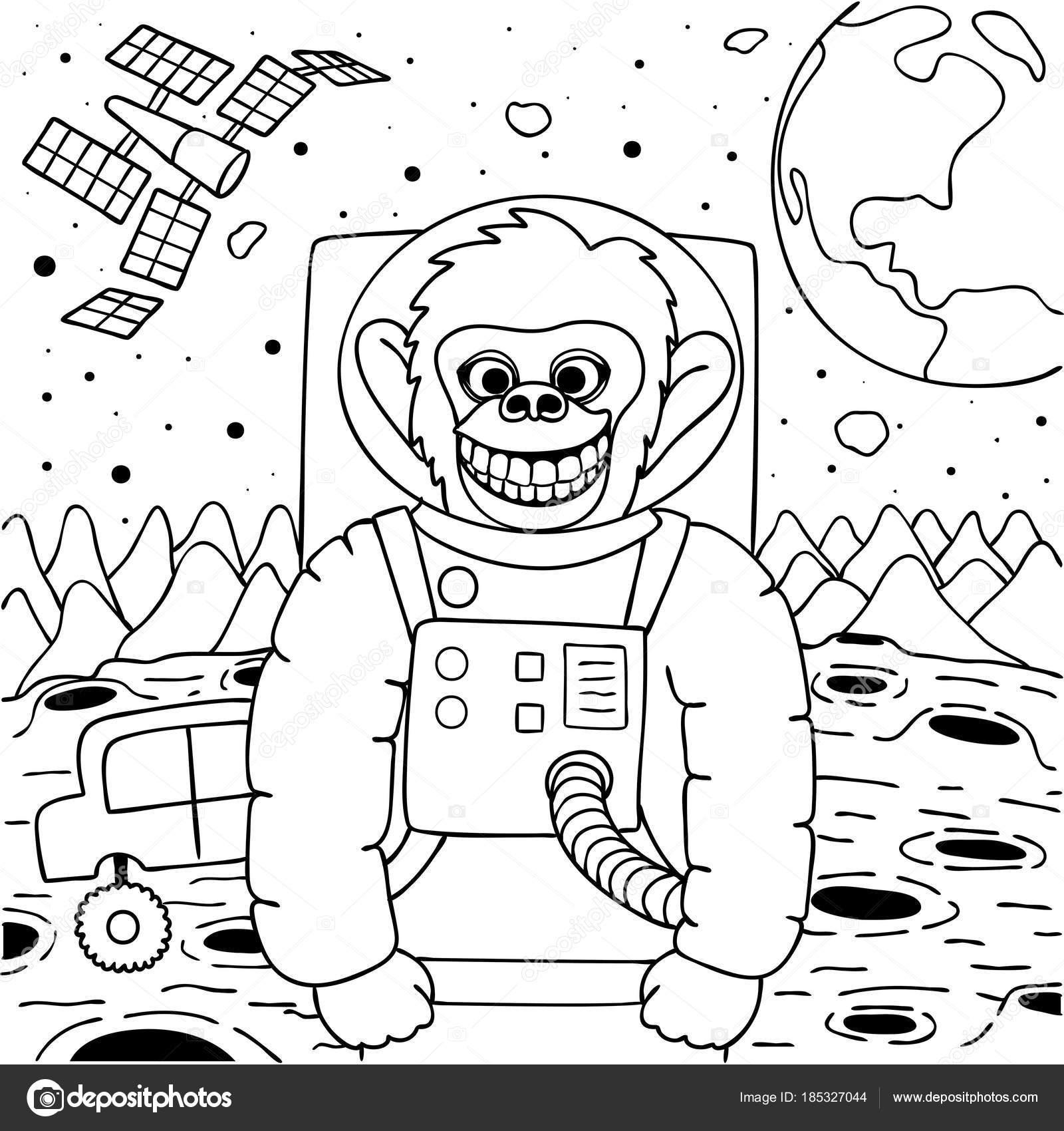 Maymun Alan Stok Vektör Somjaicindy At Gmailcom 185327044