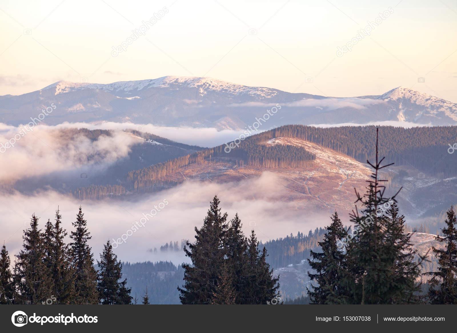 Paisajes otoales de las montaas de los Crpatos en Ucrania Niebla