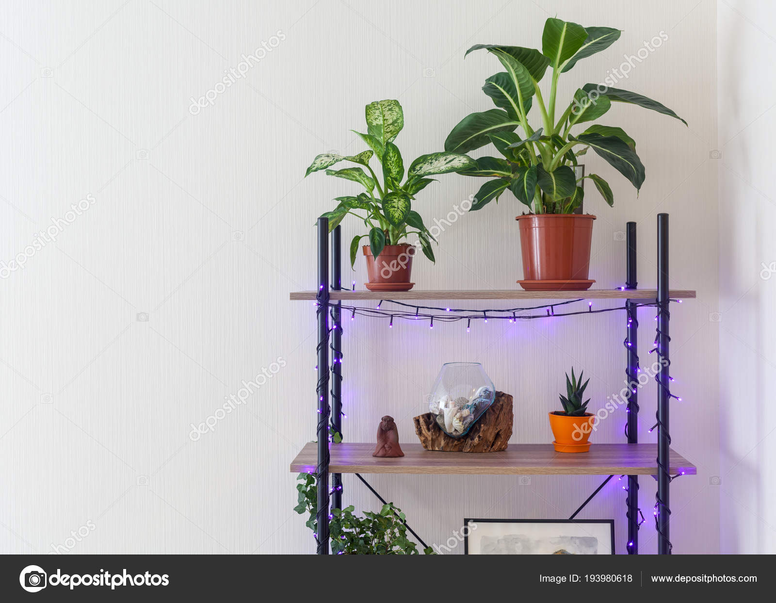 woonkamer interieur boekenplank met bloempotten verlichting glazen vaas achter wit stockfoto