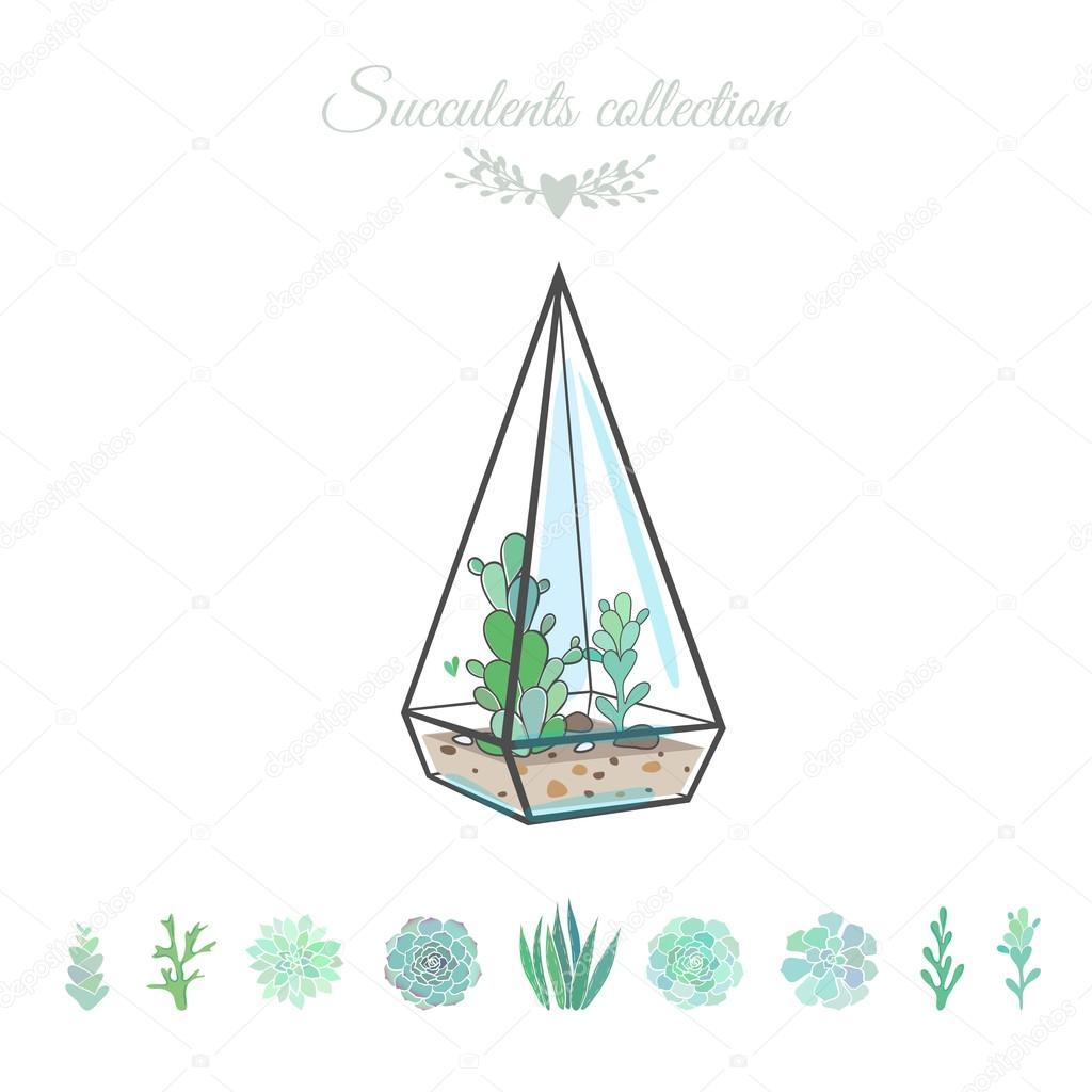 deorative floral composition with succulents