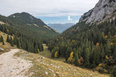 Fotografie Aus Wendelstein durch den Wald zum Brannenburg