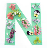 Letter N Made of Spring Flowers and Paper