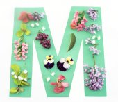 Letter M Made of Spring Flowers and Paper