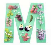 Písmeno M vyrobená z jarních květin a papíru