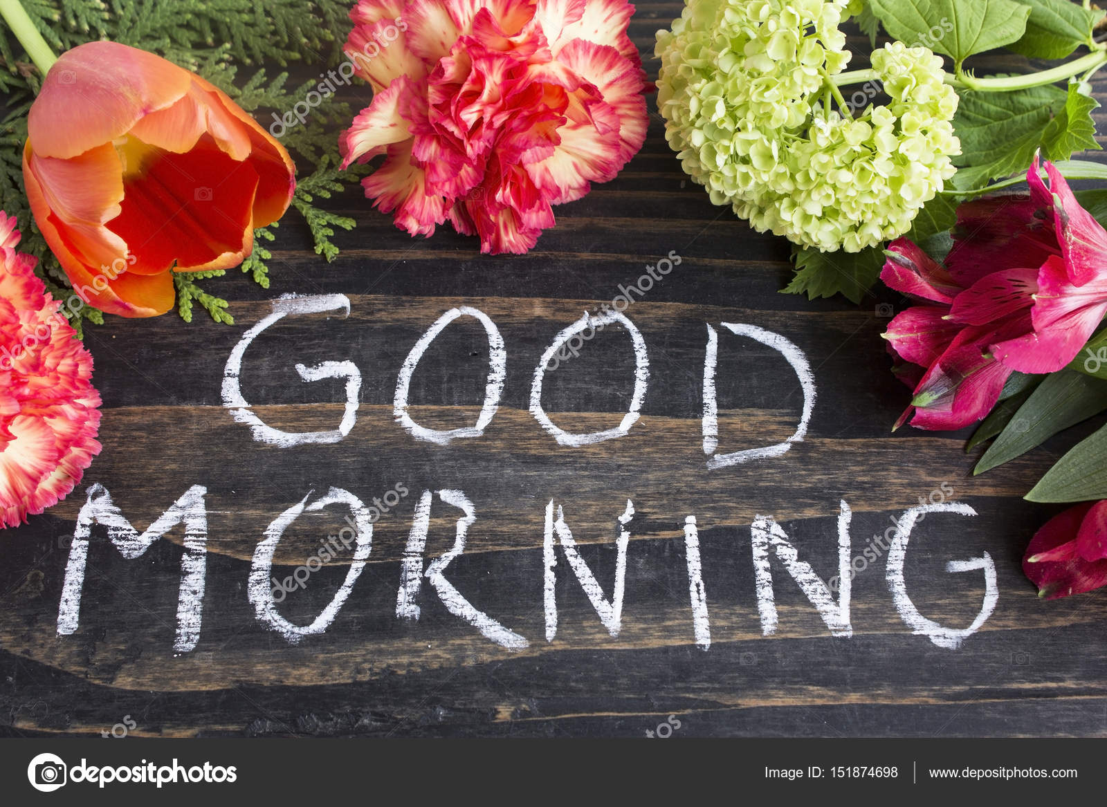 Images: good morning flowers image | Words Good Morning with