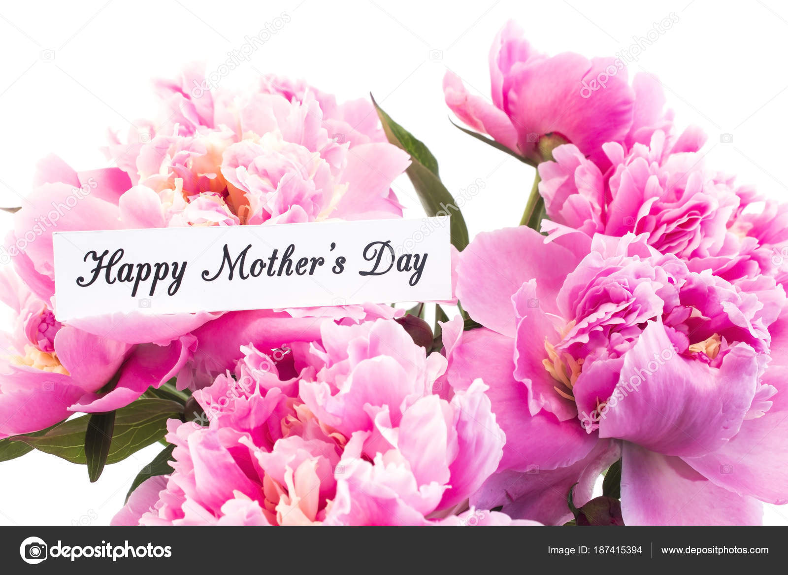 Happy Mothers Day Greeting Card With Pink Peonies Stock Photo