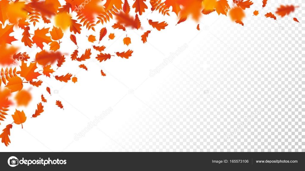 Hojas de oto o oto o caen hojas de patr n autumanl sobre - Descargar autumn leaves ...