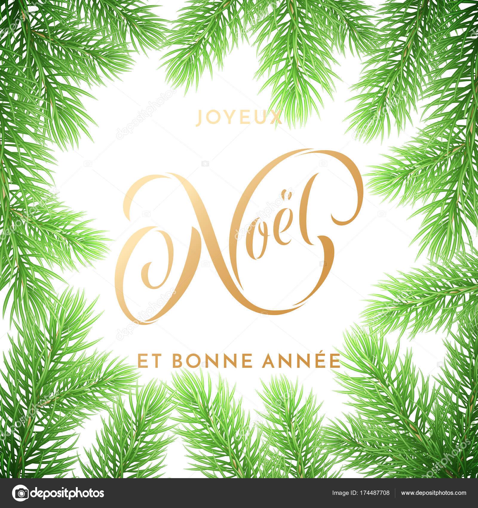 Auguri Di Buon Natale E Felice Anno Nuovo In Francese.Foto Di Bonne Noel Joyeux Noel Francese Buon Natale E Anno