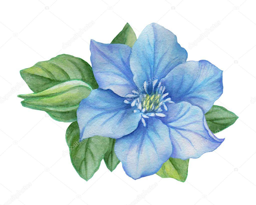 Ilustração Em Aquarela De Uma Flor Azul Em Um Fundo