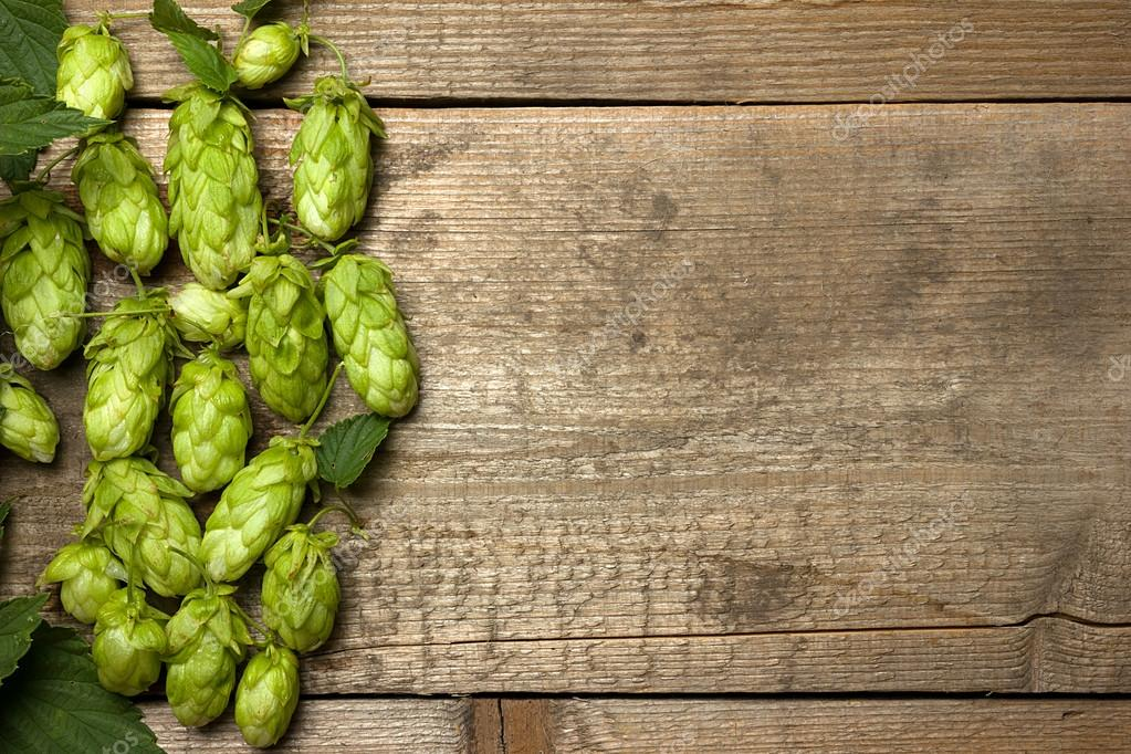 Fresh Green Hops On A Wooden Table Closeup Stock Photo