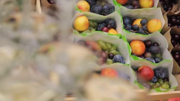 A friss, érett gyümölcs mezőben erdő szabadban vonatkozó nyaralás csomagok