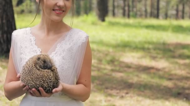 Nice hedgehog in bride hands on photosession in wedding day outdoors