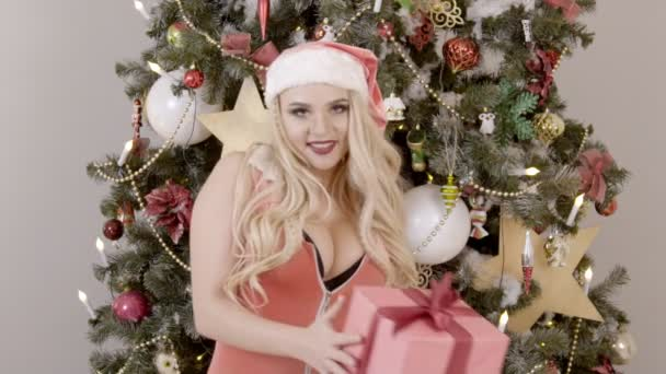 Portrait of sexy female Santa holding gift near the Christmas tree, slow motion.