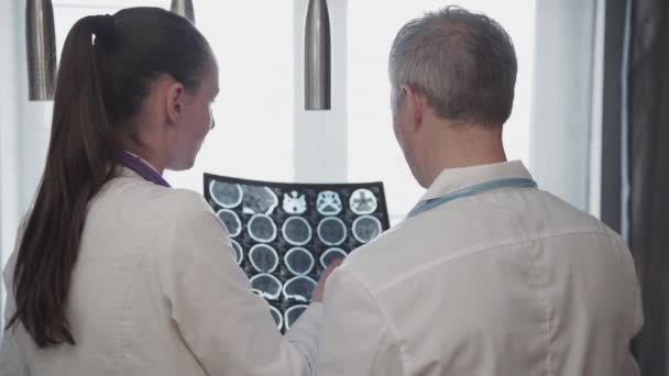 Back view of woman and man doctor watching brain x-ray standing in clinic.