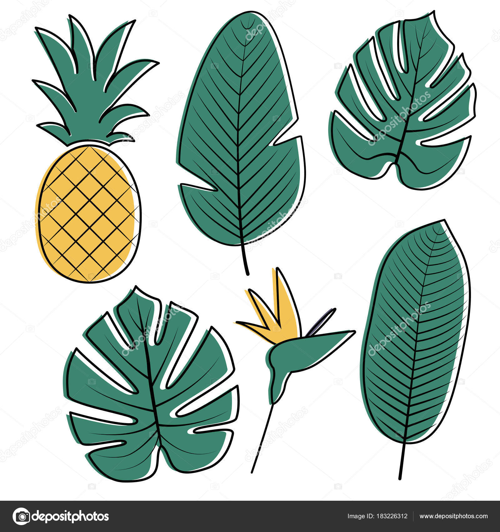 Tropical Leaves Collection Vector Illustration Stock Vector C Createrosalia 183226312 A 1x1 ratio file square 50cmx50cm or any combination. https depositphotos com 183226312 stock illustration tropical leaves collection vector illustration html
