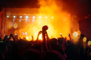 Party people attending a concert