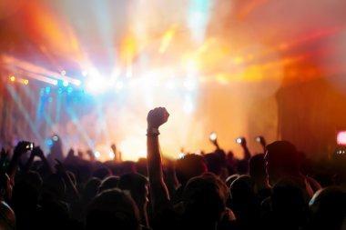 Silhouette Crowd enjoying festival