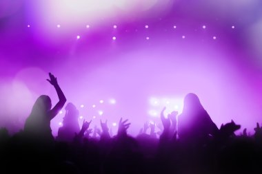 People silhouettes partying at a concert