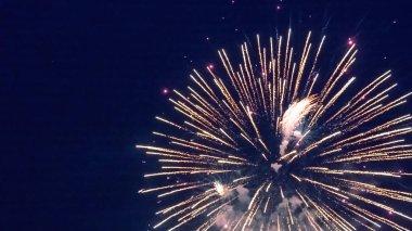Beautiful fireworks during celebration