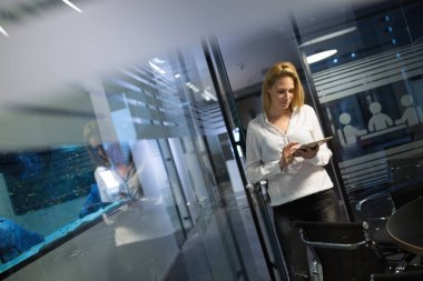 Businesswoman career at information technology office