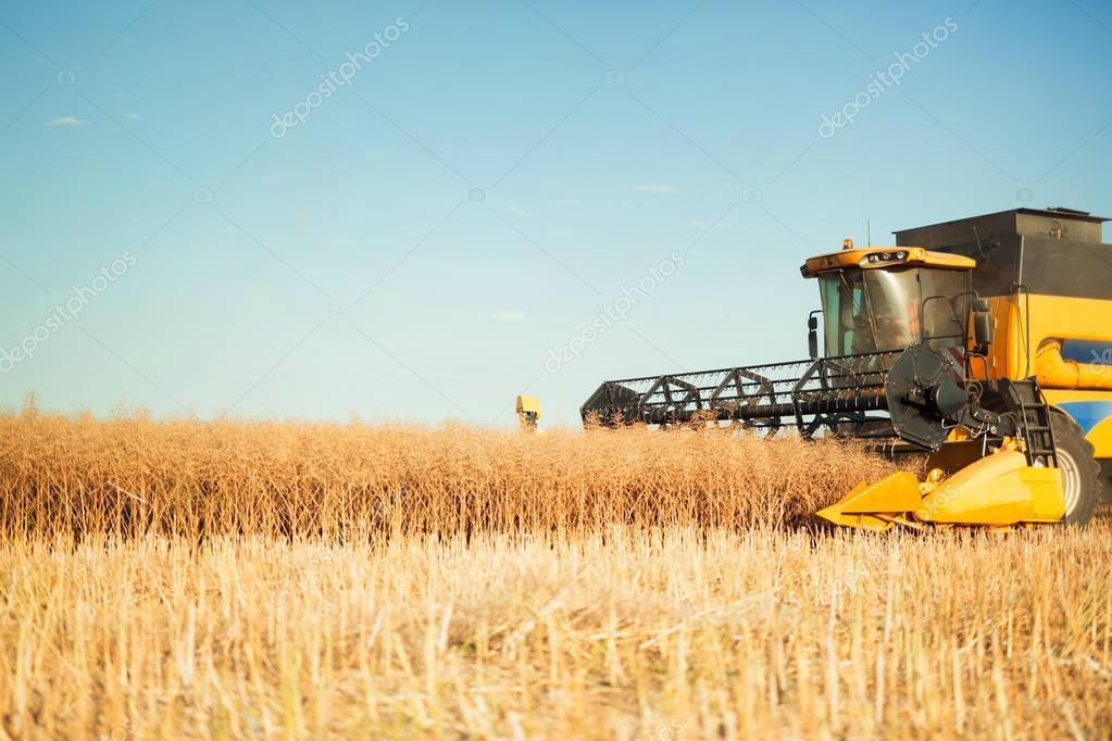 Agricultura machine working in fields