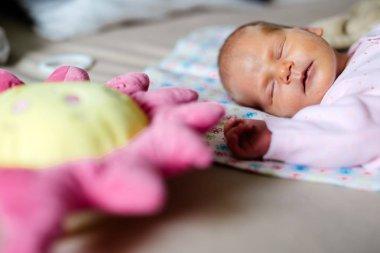 Adorable newborn baby lying