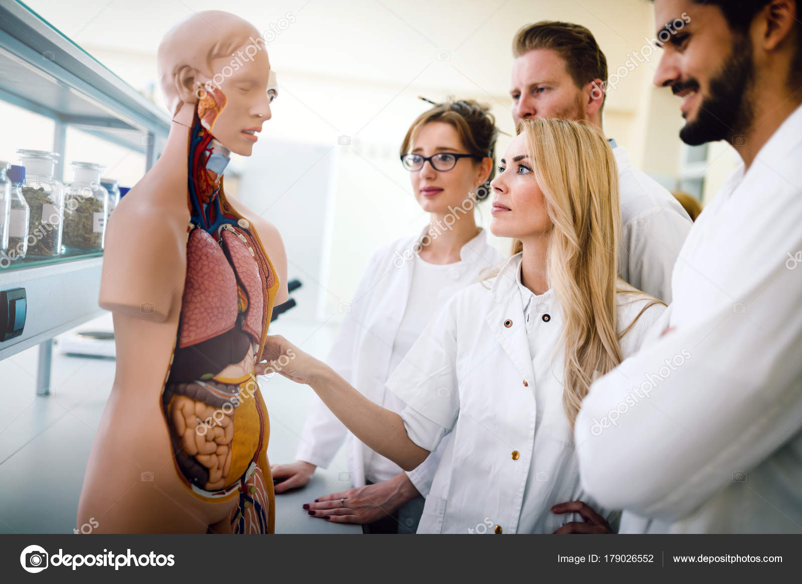 Estudiantes de medicina estudiando modelo anatómico — Foto de stock ...