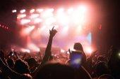 Fényképek Éljenző boldog tömeg koncerten élvezheti a zenei teljesítmény