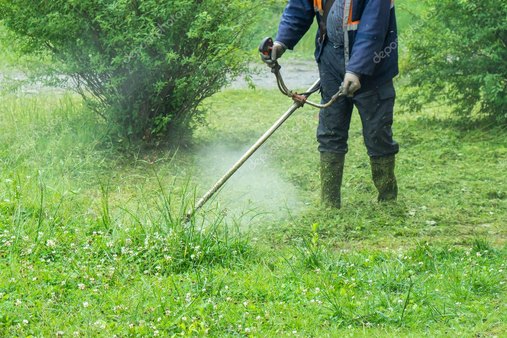 The gardener cutting grass by lawn mower.
