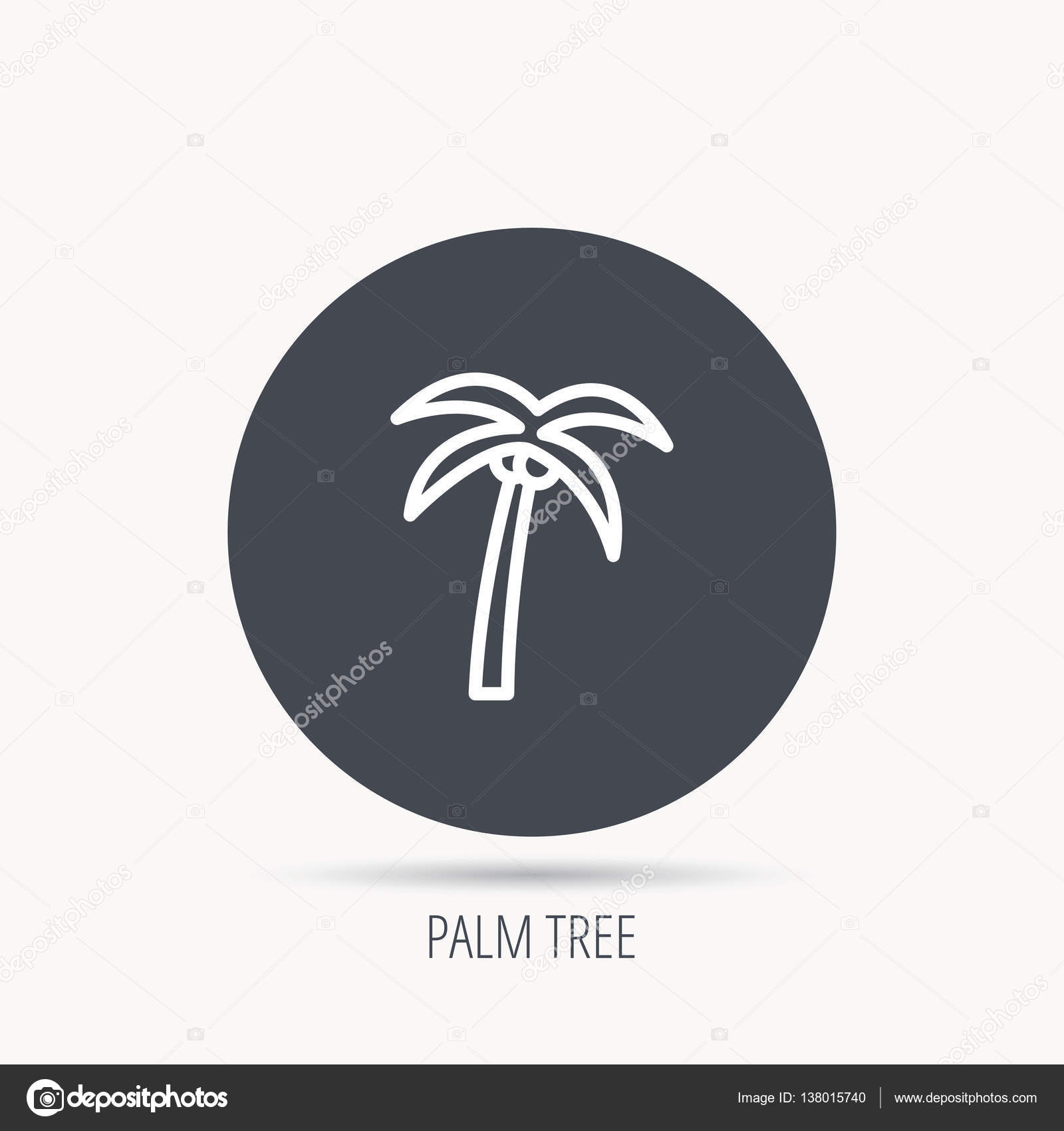 Palm Tree Icon Travel Or Vacation Symbol Stock Vector