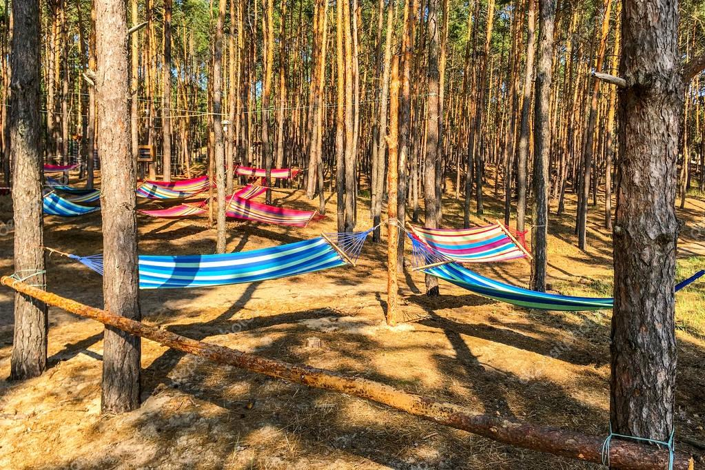 Multicolored hammocks between trees in the forest.